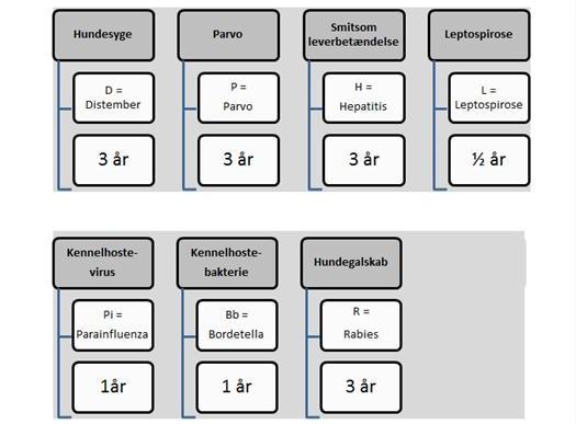 hvor lang tid holder hepatitis vaccine